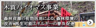 木質バイオマス事業